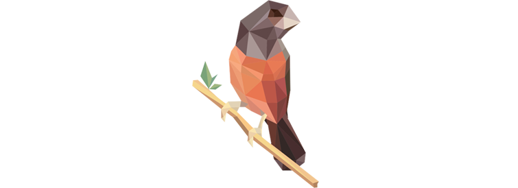 geo-bird LowPoly Social