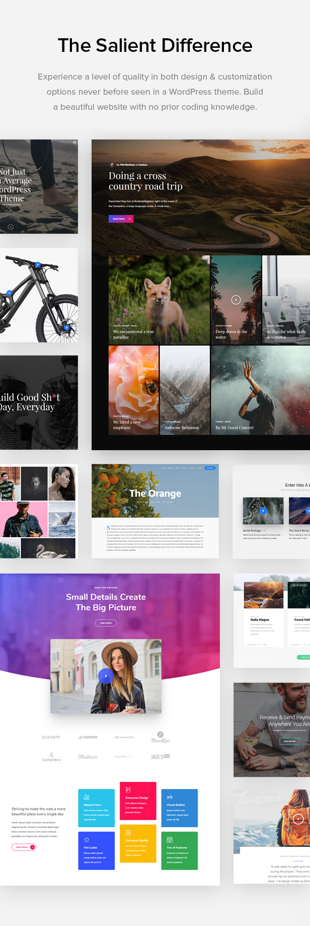 design quality  - salient difference - Salient – Responsive Multi-Purpose Theme