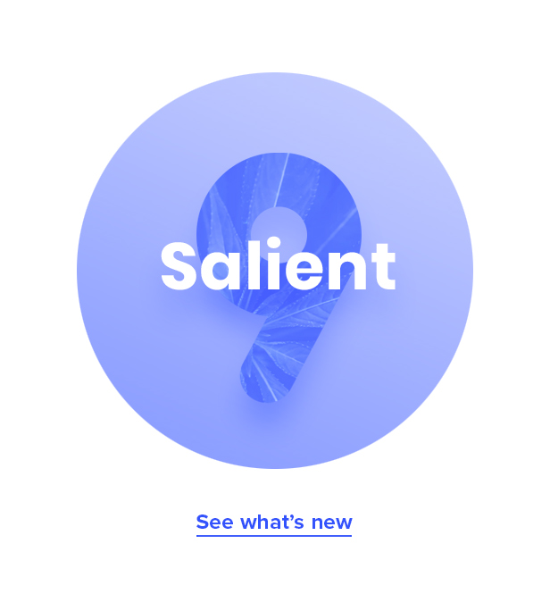 salient v9.0  - v 9 - Salient – Responsive Multi-Purpose Theme