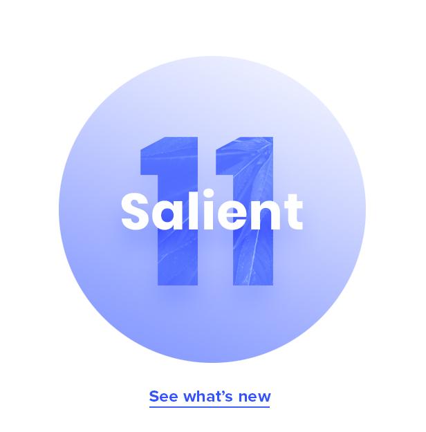Salient - Responsive Multi-Purpose Theme - 1